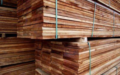 5 curiosidades que nunca te contaram sobre a madeira brasileira!