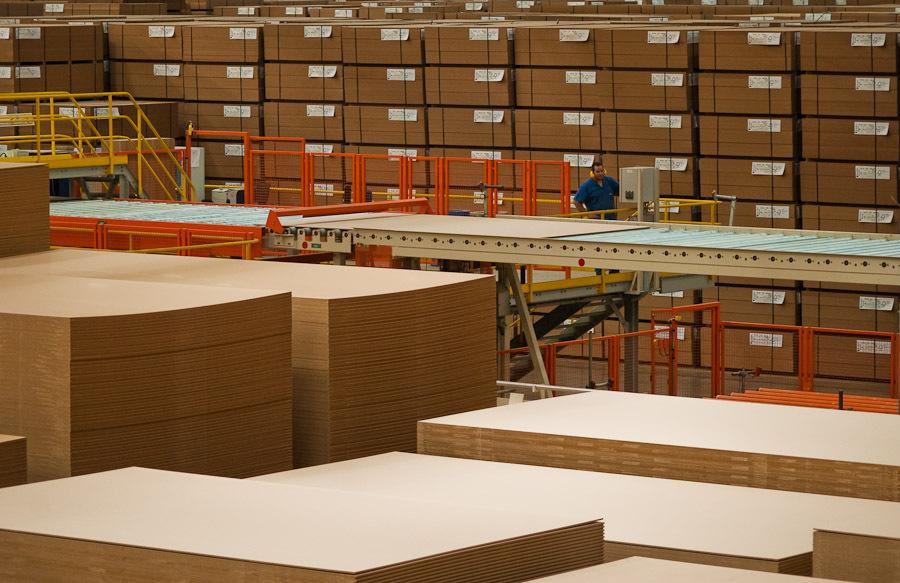 Conheça o processo de extração da madeira para uso em pisos e revestimentos