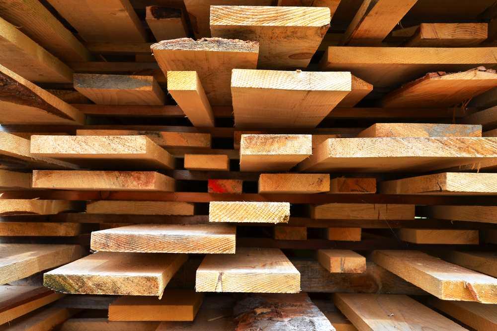 5 fatos que você não sabia sobre a madeira!